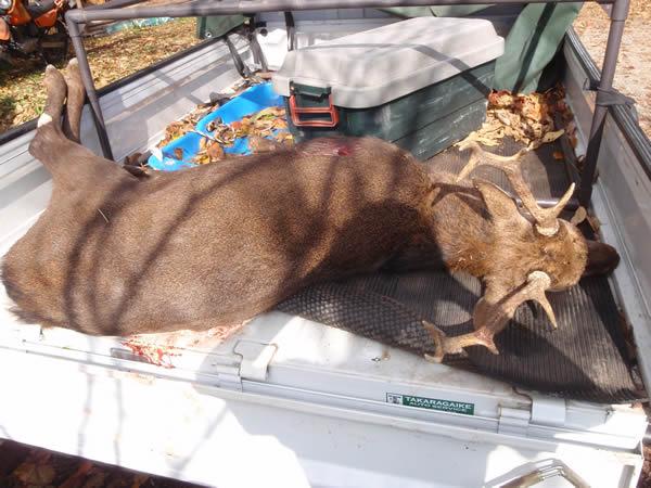 狩猟生活と職業   食べる   連載...