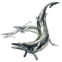 バシロサウルス想像図(©︎ Pavel Riha)