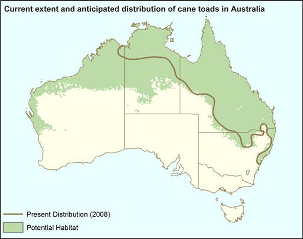 オーストラリアで見えた環境問題への ...